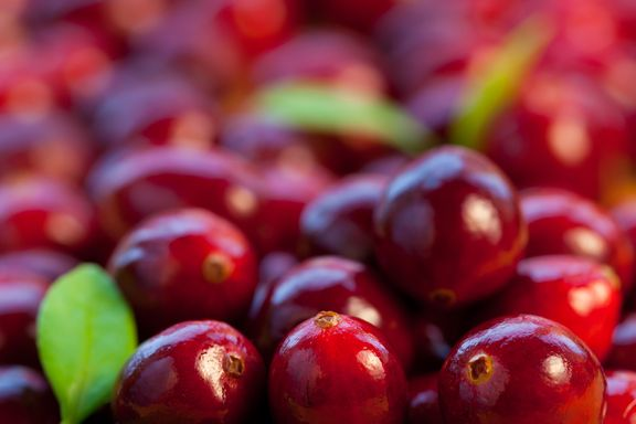 Bladder Infections Might Not Be Prevented by Cranberry Juice Study Says