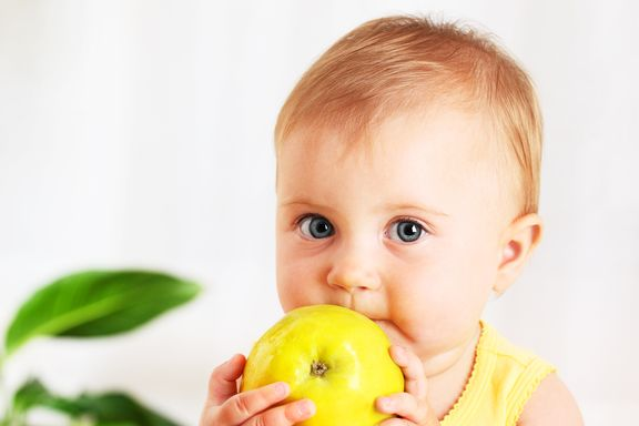 Diet Tips to Support Healthy Brain Function in Children
