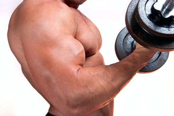Les 13 Meilleurs Programmes d'Entrainement pour vous Muscler