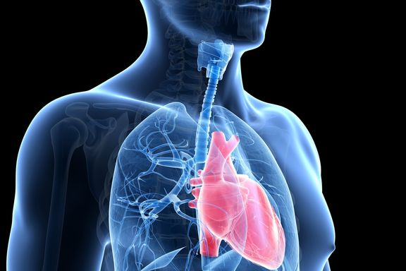 Treatment Options for Pulmonary Arterial Hypertension
