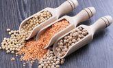 8 consejos de alimentación saludable para volverse vegetariano
