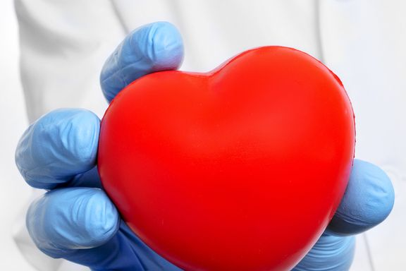 Newly Discovered Gene Could Help Doctors Fight Heart Disease