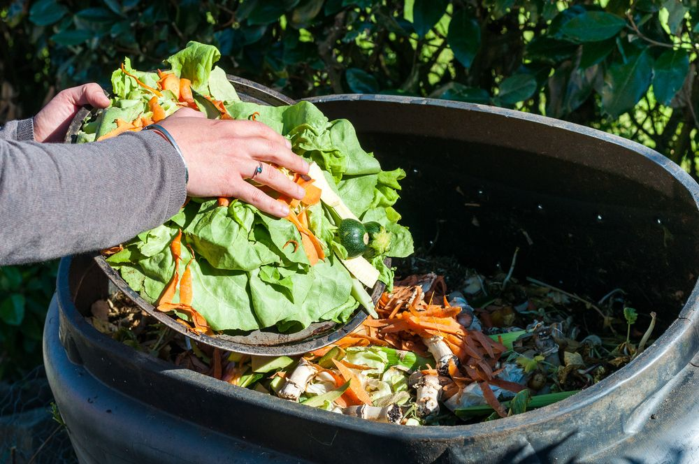Easy Steps to Composting