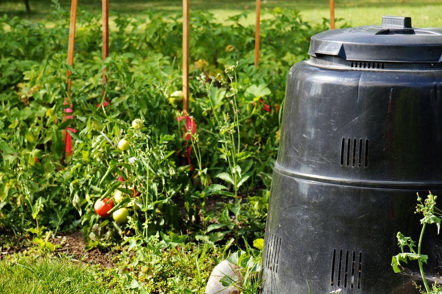 8 pasos simples para hacer compostaje