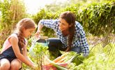 Fun and Healthy Mother's Day Ideas For The Family