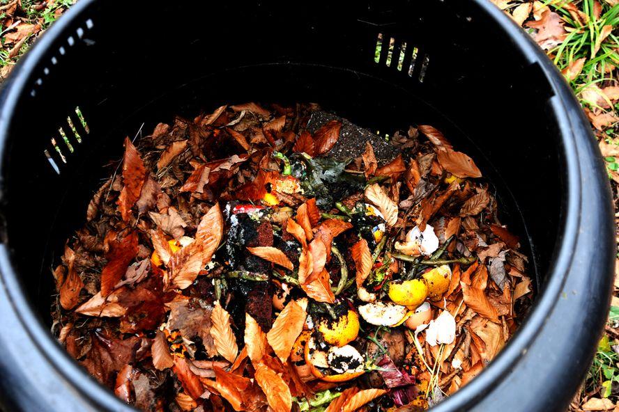 8 étapes vers le compostage facile