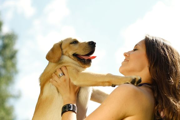 6 Ways Pets Can Improve Your Health