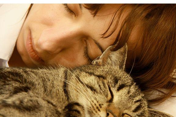 8 Sounds That Make Us Sleepy