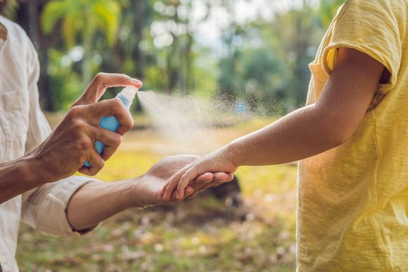 Effective Natural Insect Repellants