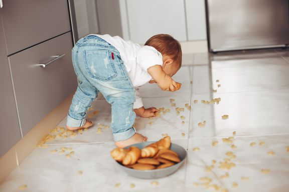 Dropped Food and the 5-Second Rule
