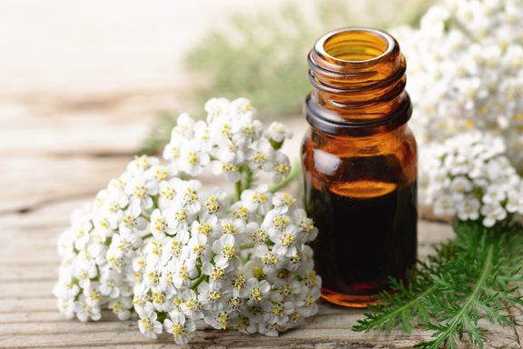 Best Healing Herbs For Women