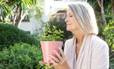 Study Links Smell Loss with Imminent Death