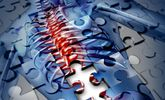 New Drug Could Help Repair Spinal Cord Injuries