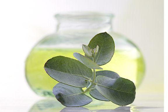 Trouble de santé ? Trouvez la bonne huile essentielle!