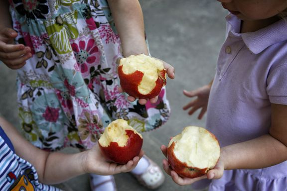 Department of Agriculture Approves Non-Browning Apples