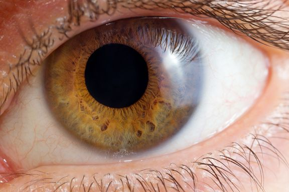 Your Eyes Are The Windows to Overall Health