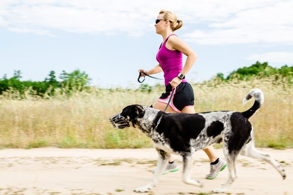 7 Tips for Summer Exercise with Your Dog