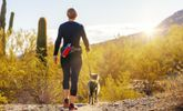 Healthy Solo Hobbies to Try This Summer