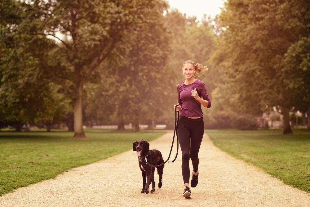 Ways To Get Exercise With Your Dog