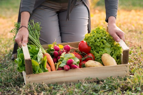 7 Healthy Reasons Why You Should Grow Vegetables
