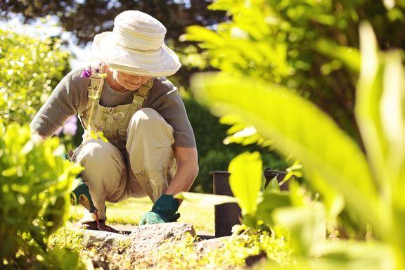 Los seis factores desencadenantes del Alzheimer más alarmantes