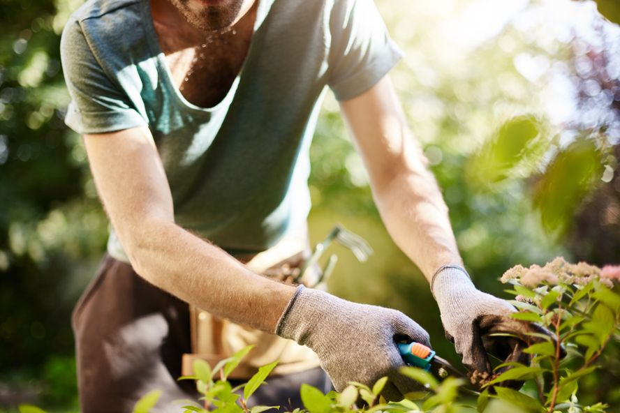 Ways to Prevent Injury When Gardening