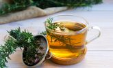 The Incredible Health Benefits of Rosemary