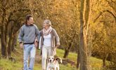 Cinco cambios de estilo de vida para prevenir hemorroides