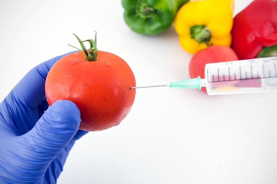 6 Cons and Pros of GMOs