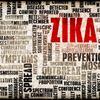 Seis factores clave sobre el virus del zika que todos deberíamos conocer