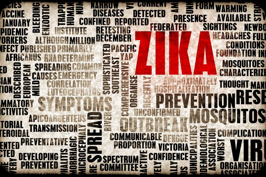 6 faits à savoir absolument sur le virus Zika