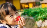 Seis grandes beneficios para la salud de la jardinería