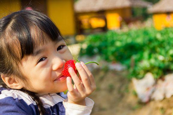 Säen und ernten Sie die 6 gesundheitlichen Vorteile von Gartenarbeit