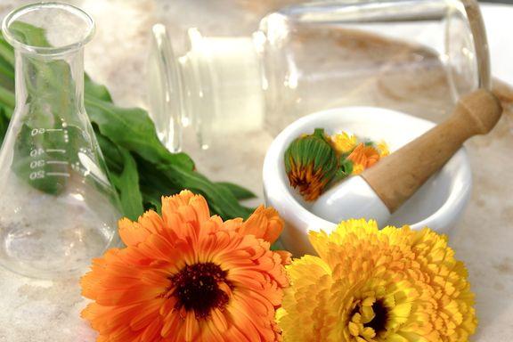 Seis hierbas caseras para lucir una piel radiante