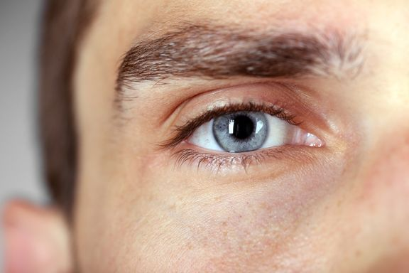 6 Essential Nutrients for Brighter Eye Health