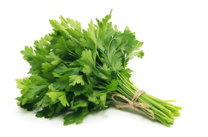 The Incredible Health Benefits of Parsley