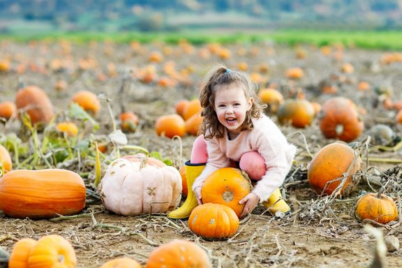 Reasons to Embrace the Health Benefits of Fall