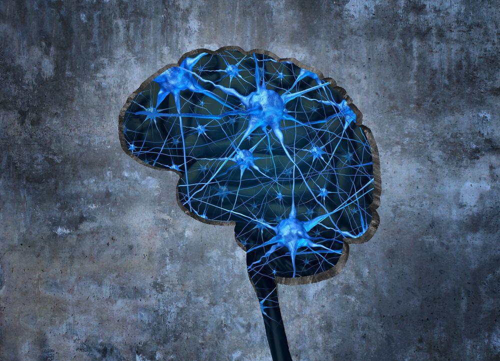 7 Neurotransmitters Vital to Brain and Body Health