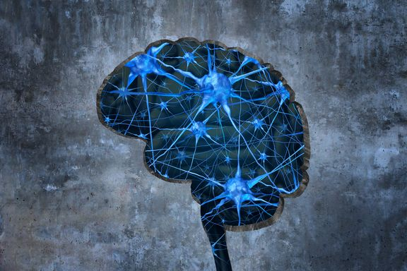 7 Neurotransmitters Vital to Brain and Body Health