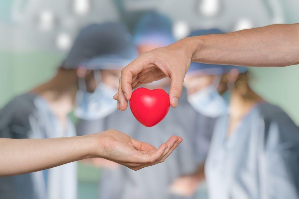 Reasons You Should Support Organ Donation