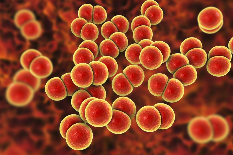 6 Things You Need to Know About Superbugs