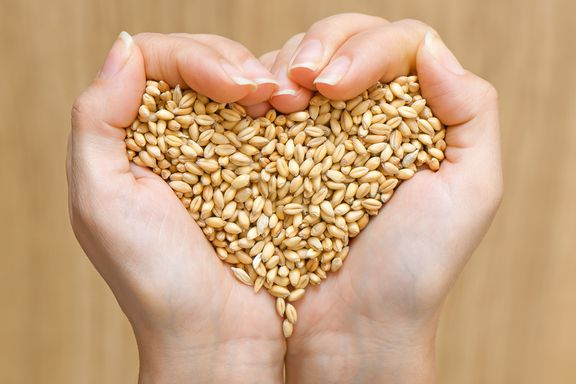 Incredible Health Benefits of Barley