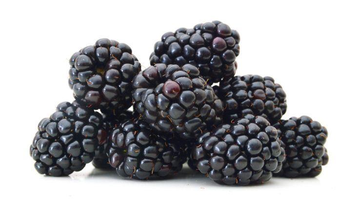 Healthiest Berries to Eat