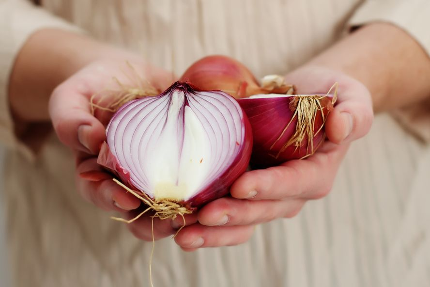 The Incredible Health Benefits of Onions