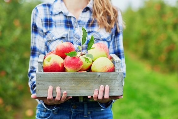 The Incredible Health Benefits of Apples