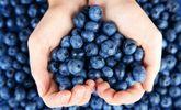 Les aliments que vous devriez manger quotidiennement