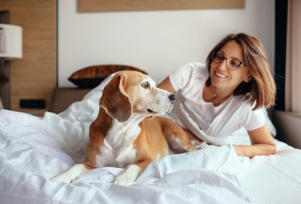 Scientific Benefits of Sleeping With Your Dog - ActiveBeat