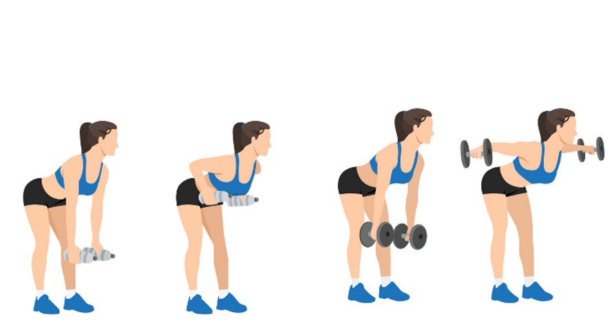 Superset: bent-over barbell row followed immediately by rear delt fly
